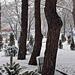 Фотогалерея Геленджика Геленджик,<br>Белый&nbsp;альбом Фото № 101