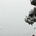 Фотогалерея Геленджика Геленджик,<br>Белый&nbsp;альбом Фото № 102