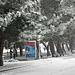 Фотогалерея Геленджика Геленджик,<br>Белый&nbsp;альбом Фото № 104