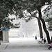 Фотогалерея Геленджика Геленджик,<br>Белый&nbsp;альбом Фото № 108