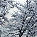 Фотогалерея Геленджика Геленджик,<br>Белый&nbsp;альбом Фото № 14