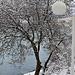 Фотогалерея Геленджика Геленджик,<br>Белый&nbsp;альбом Фото № 26