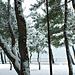 Фотогалерея Геленджика Геленджик,<br>Белый&nbsp;альбом Фото № 67