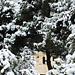 Фотогалерея Геленджика Геленджик,<br>Белый&nbsp;альбом Фото № 7