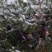 Фотогалерея Геленджика Геленджик,<br>Белый&nbsp;альбом Фото № 74