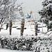 Фотогалерея Геленджика Геленджик,<br>Белый&nbsp;альбом Фото № 78