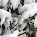 Фотогалерея Геленджика Геленджик,<br>Белый&nbsp;альбом Фото № 81